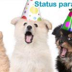 40 Status para Aniversário