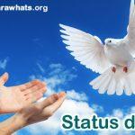 Status de Paz e Positividade