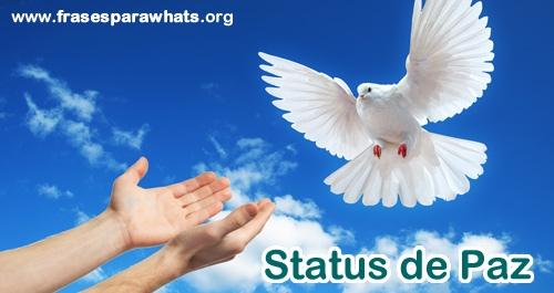 Status de Paz e Positividade para whatsapp